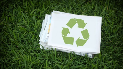 What Options Do You Have for Recycled Paper?