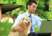 what-my-dog-taught-me-about-social-media-marketing
