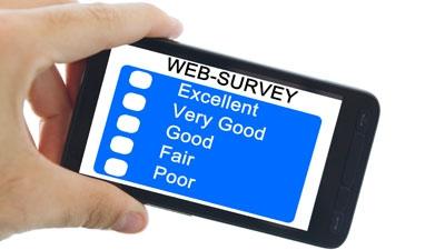 SMS Surveys Are No Small Business