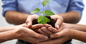 when-should-a-small-business-focus-on-growth-over-profits-