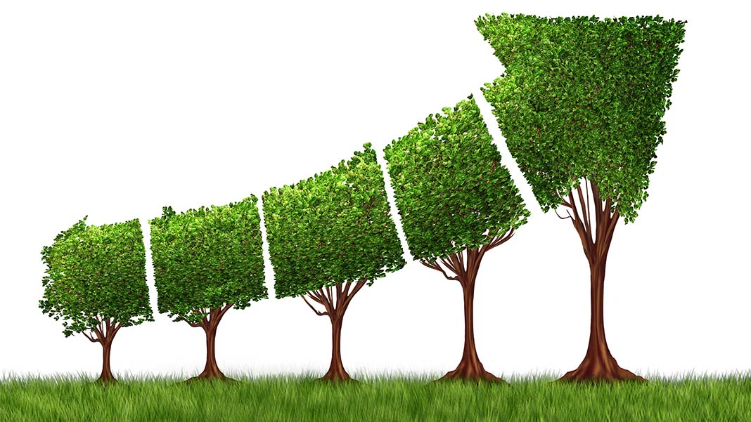 Building a sustainable business is more than profit for Green design company