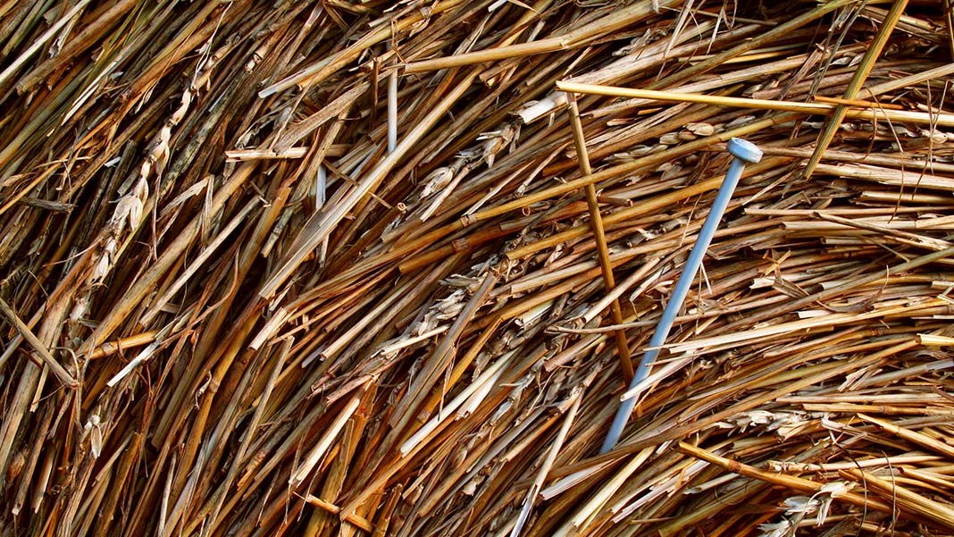 Marketing and Big Data: Finding That Needle in the Haystack