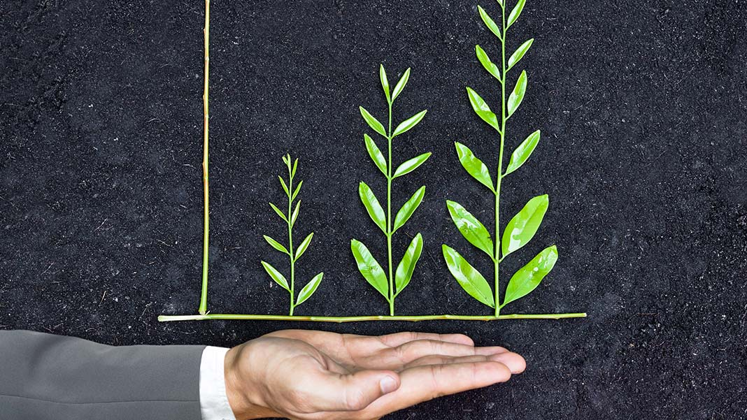 The Why and How Behind Sustainable Business