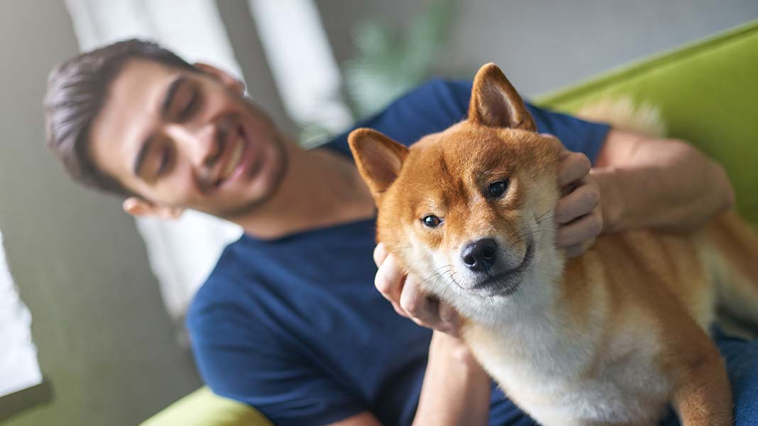 Furry Stress-Busters: Benefits of a Pet-Friendly Workplace