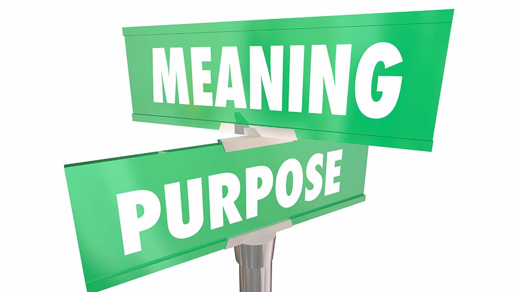 How to Embrace Brand Citizenship for Purpose and Profit