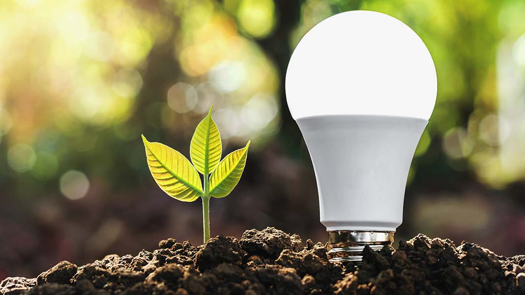 Can You Power Your Business with Renewable Energy?