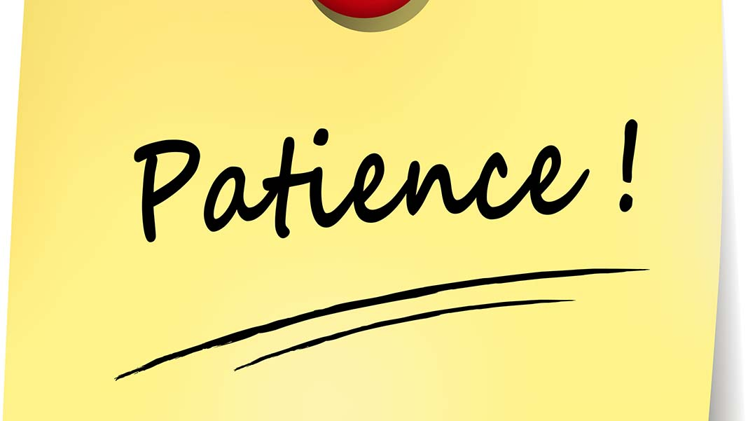 Patience: The Missing Key to Brand Awareness ROI