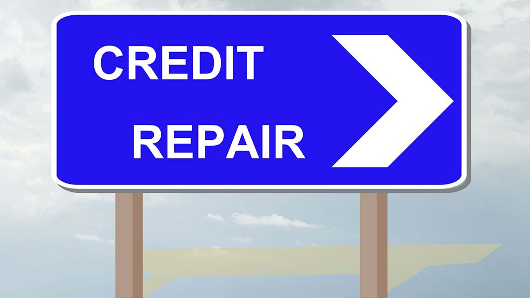 5 Tips to Improve Your Business Credit Score