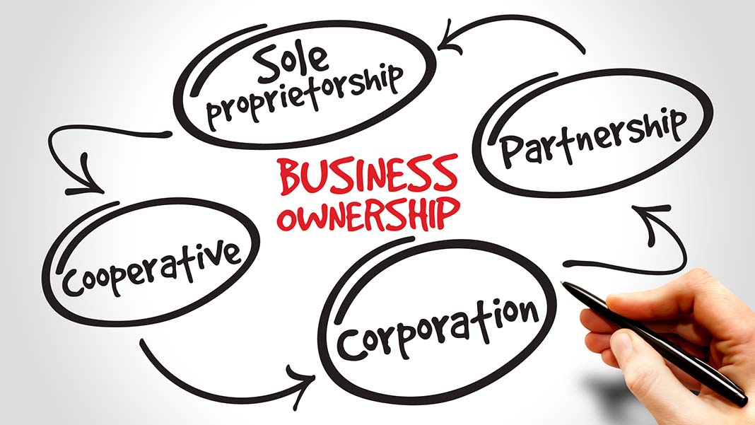 Basics of Business Structure: Choosing the Right Entity for Your Biz