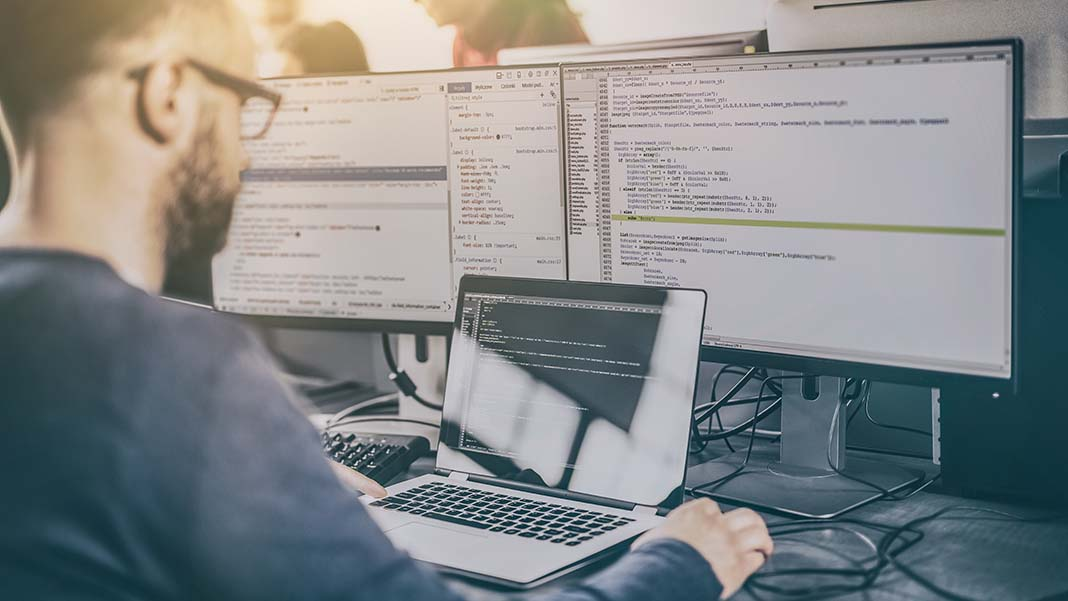 Don't Fear the Rookie: Why Junior Developers are Good for Your Software Project