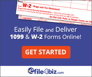 efile4Biz – Technology Category Top Sidebar