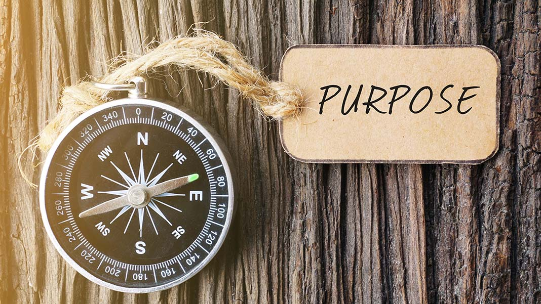 How to Build a Purpose-Driven Organization