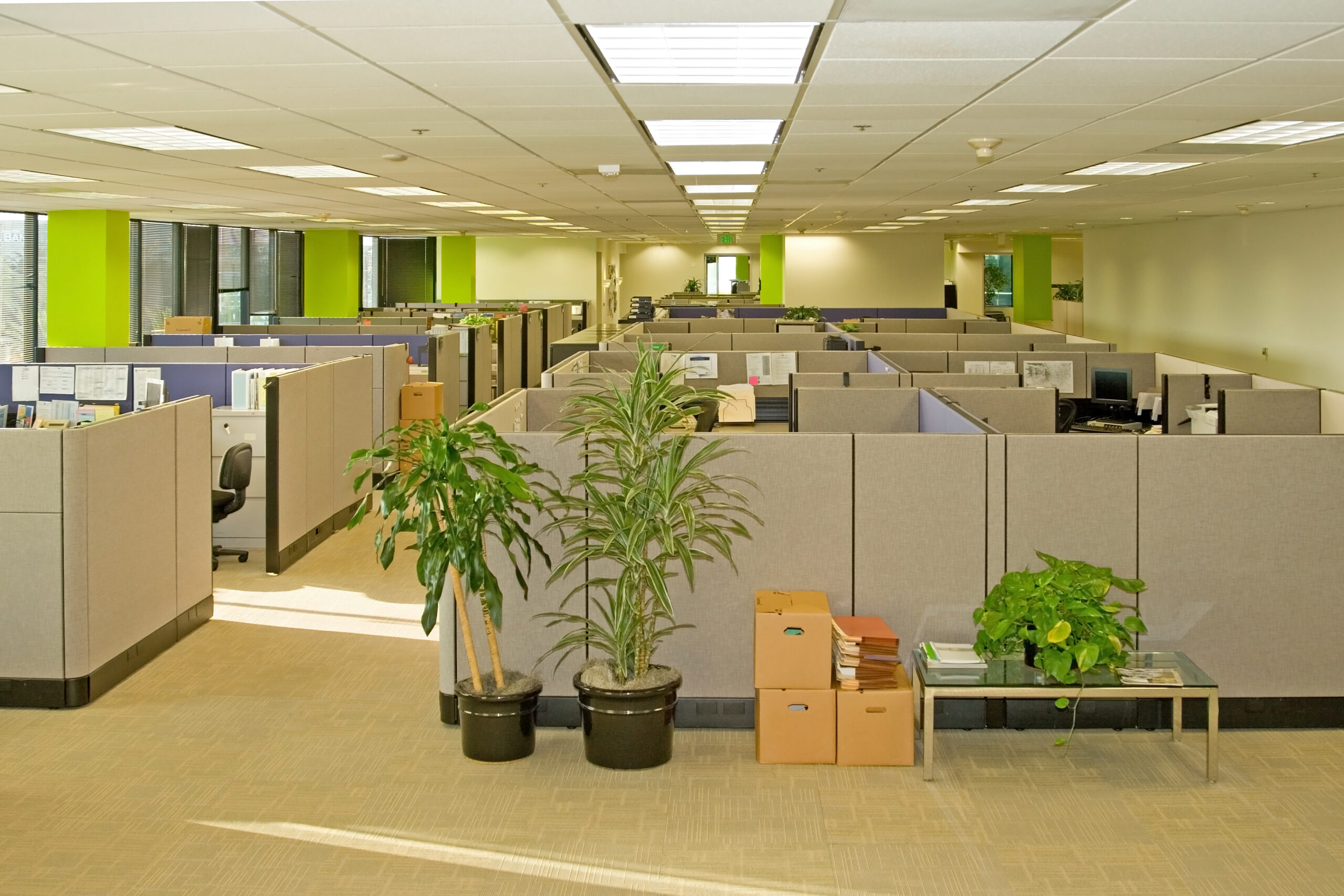 Yes, Office Carpets Affect Your Employees' Health