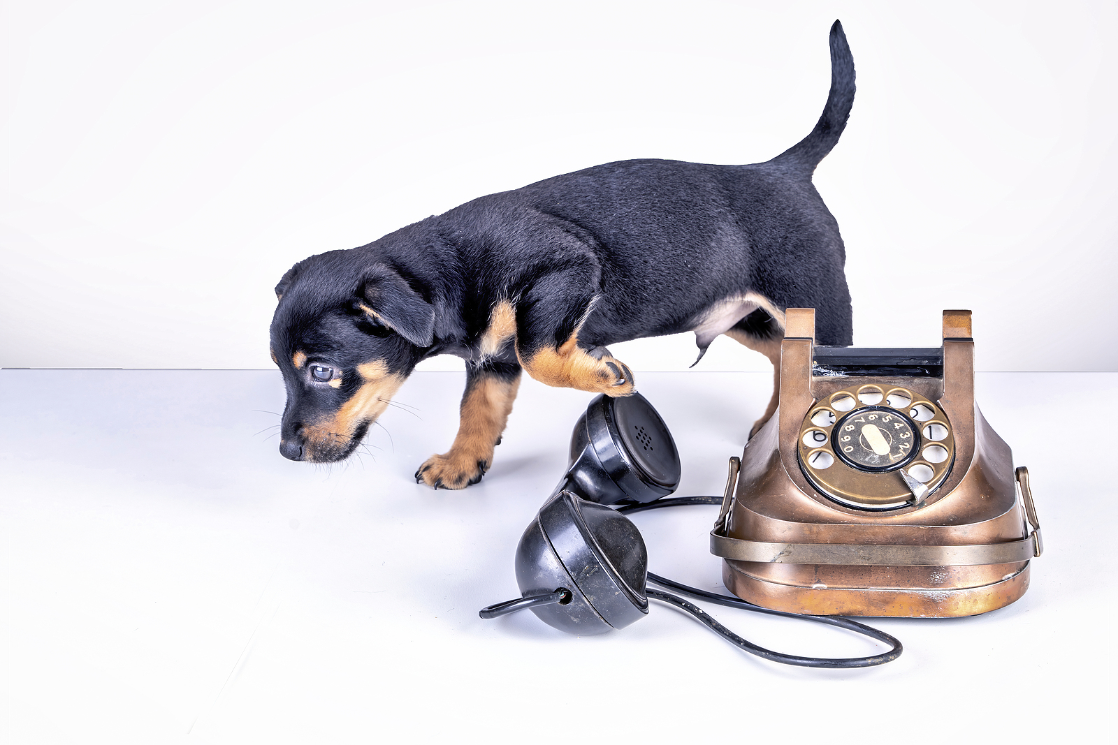 Do Phone Calls Have a Future?